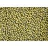 进口绿豆免税批发
