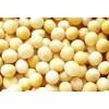 进口黄豆免税批发