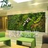 枫林厂家仿真草坪商场房地产文档绿植草坪室外**塑料草坪植物墙
