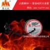 电池仓灭火器,选火麒麟SH-Ⅰ型自动灭火装置