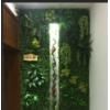 仿真草坪植物墙假花草背景墙装饰背景